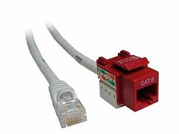 CM11351 6ft CAT6/RJ-45 F/M SNAP IN ASSEMBLY Cable (RED) by Altinex